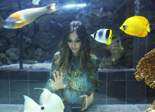 Dallas Aquarium FashionCoolture