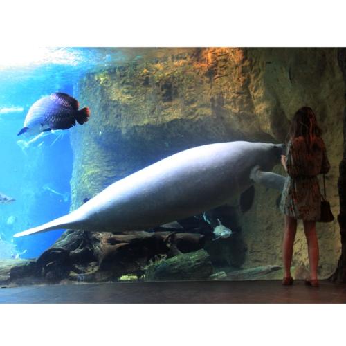 FashionCoolture - Dallas World Aquarium