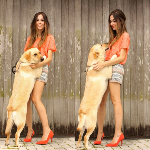 FashionCoolture - Instagram dog  (2)