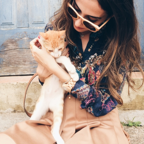 FashionCoolture - Instagram cat